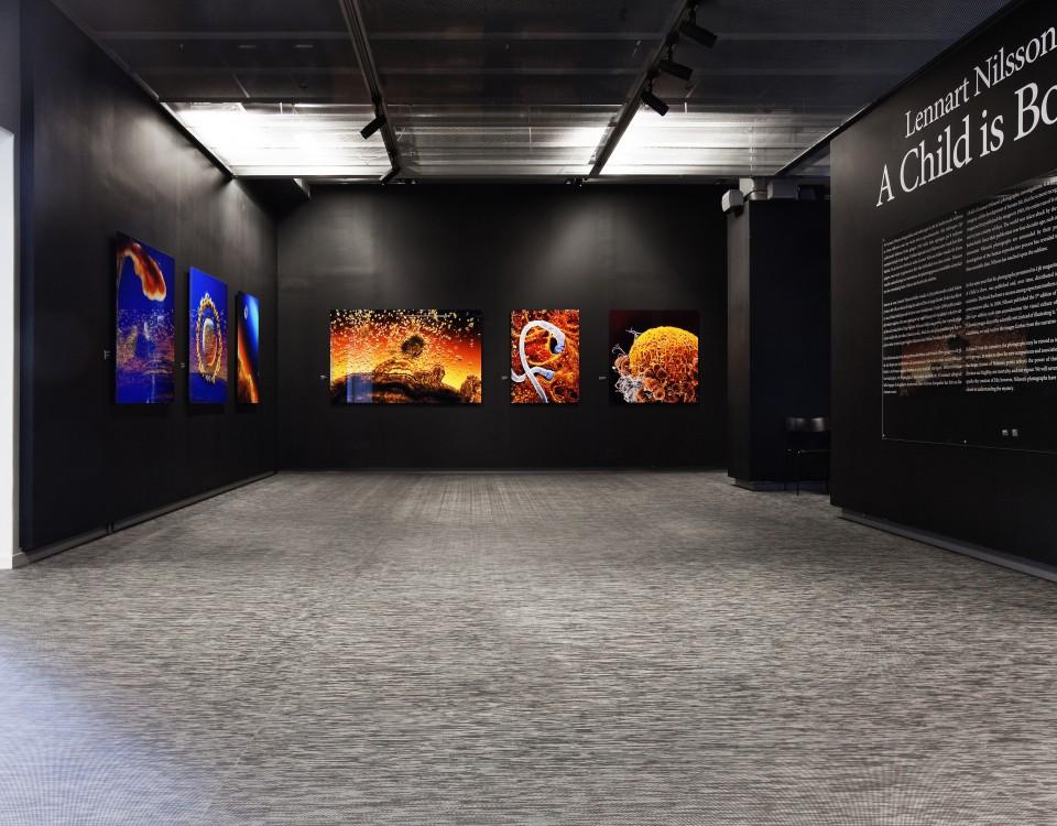 Музей Fotografiskа в Стокгольме, Швеция Graphic Etch
